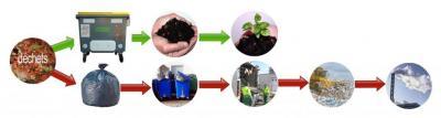 recyclage par le lombric